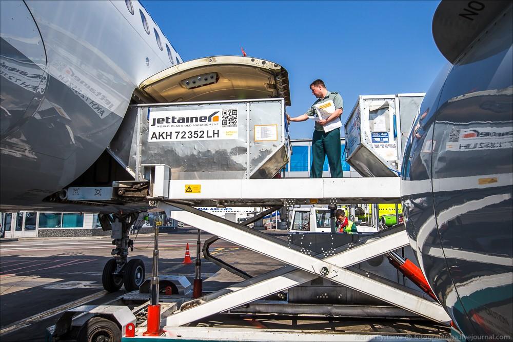 таможенное оформление грузов в аэропорту