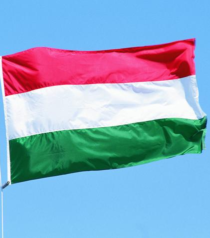 доставка из Венгрии